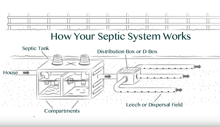 Diagram Showing How Your Septic System Works